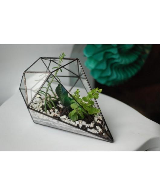 Флорариум Diamond